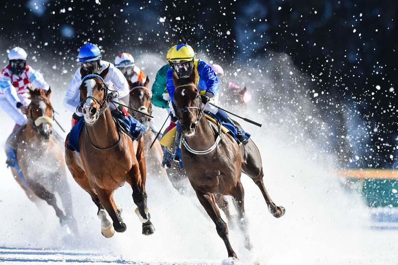 ม้าแข่งออนไลน์ ได้เงินจริง