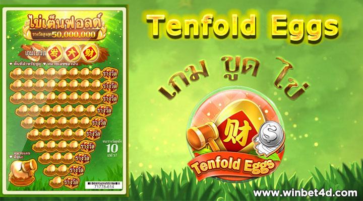 Egg ไข่เต็นฟอลด์